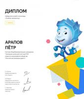 Certificate_Arapov_Pyotr.jpg